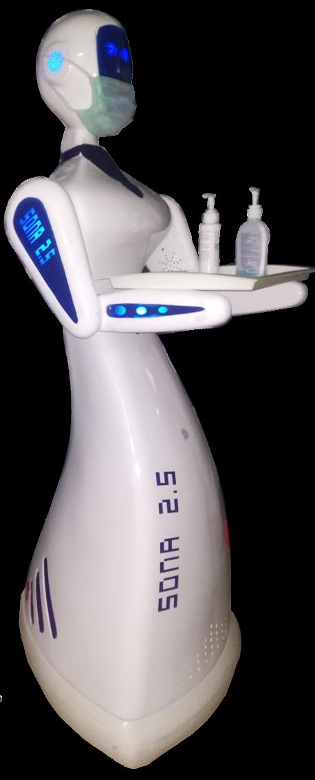 SONA 2.5 Robot