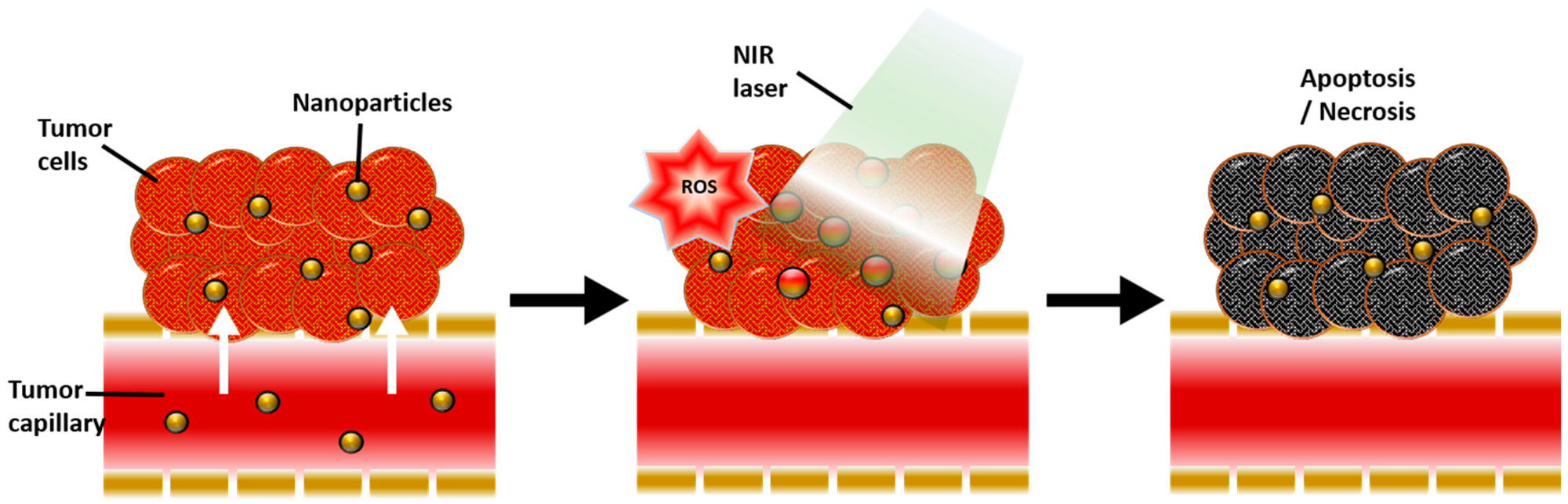 """Near-Infrared-Responsive Cancer Photothermal and Photodynamic Therapy Using Gold Nanoparticles"" published by Hyung Shik Kim and Dong Yun Lee in 2018"